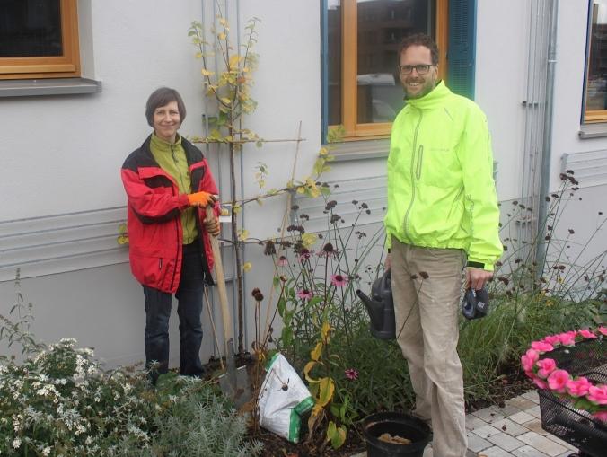 Pflanzung eines Quittenbaumes