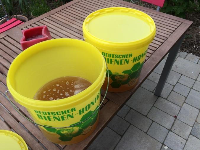 12 kg Honig von den Bienen auf dem Dach